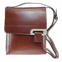 Hnedá kožená taška Chicca Borse Valeria