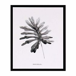 Obraz sømcasa Herbarium, 25×30cm